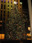 Rockefeller Center Tree. The best Christmas Tree in the world to me ...